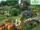 Un jardin de rêve selon Quentin
