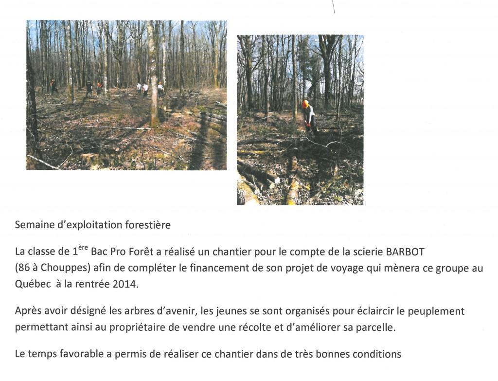 Mars2014_ArticleForêtPremière